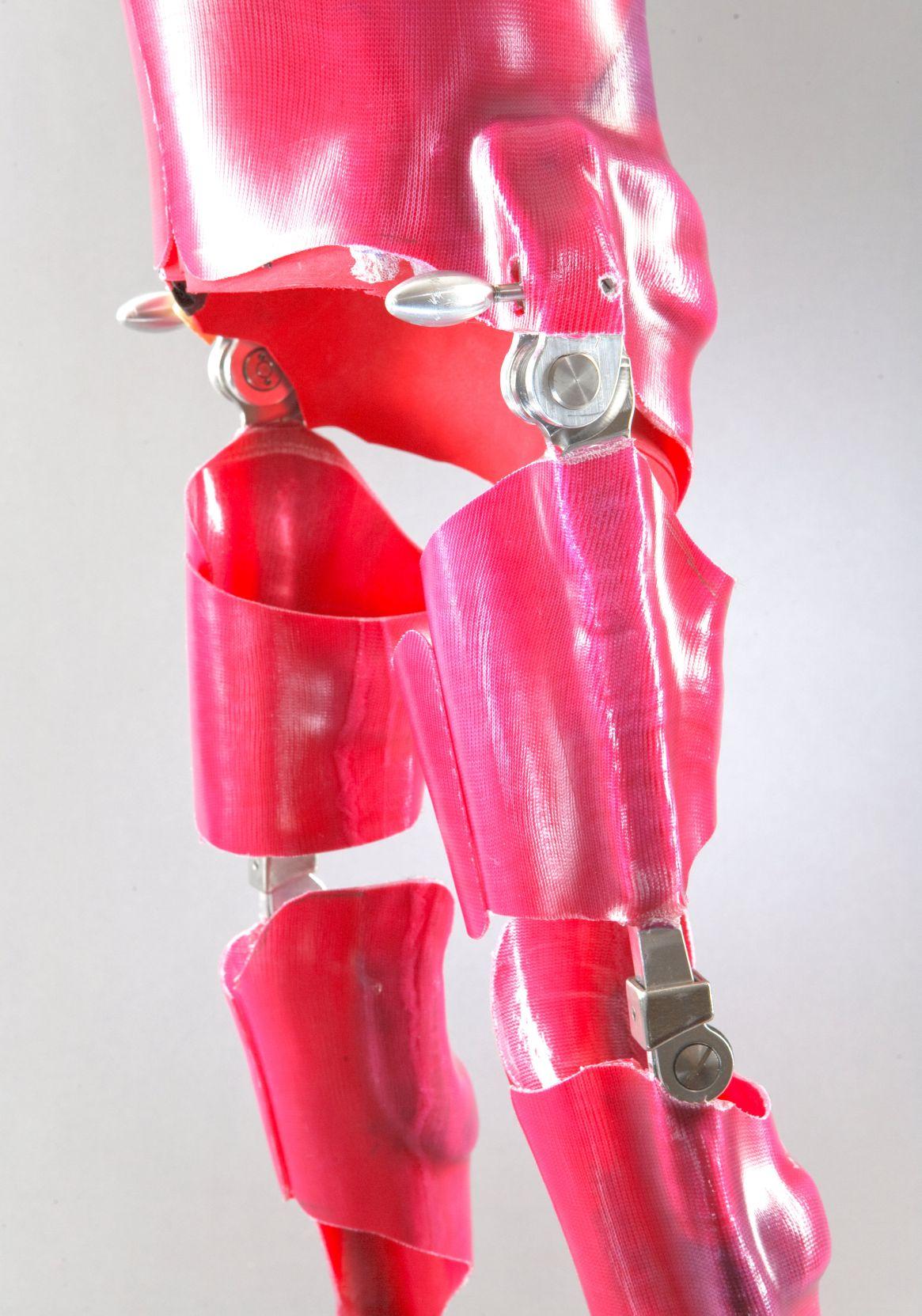 Salera hip joint